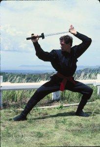 american-ninja 1